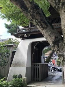 ぴーきち&ダイナ ハーレーで行くメタセコイア並木 浮御堂