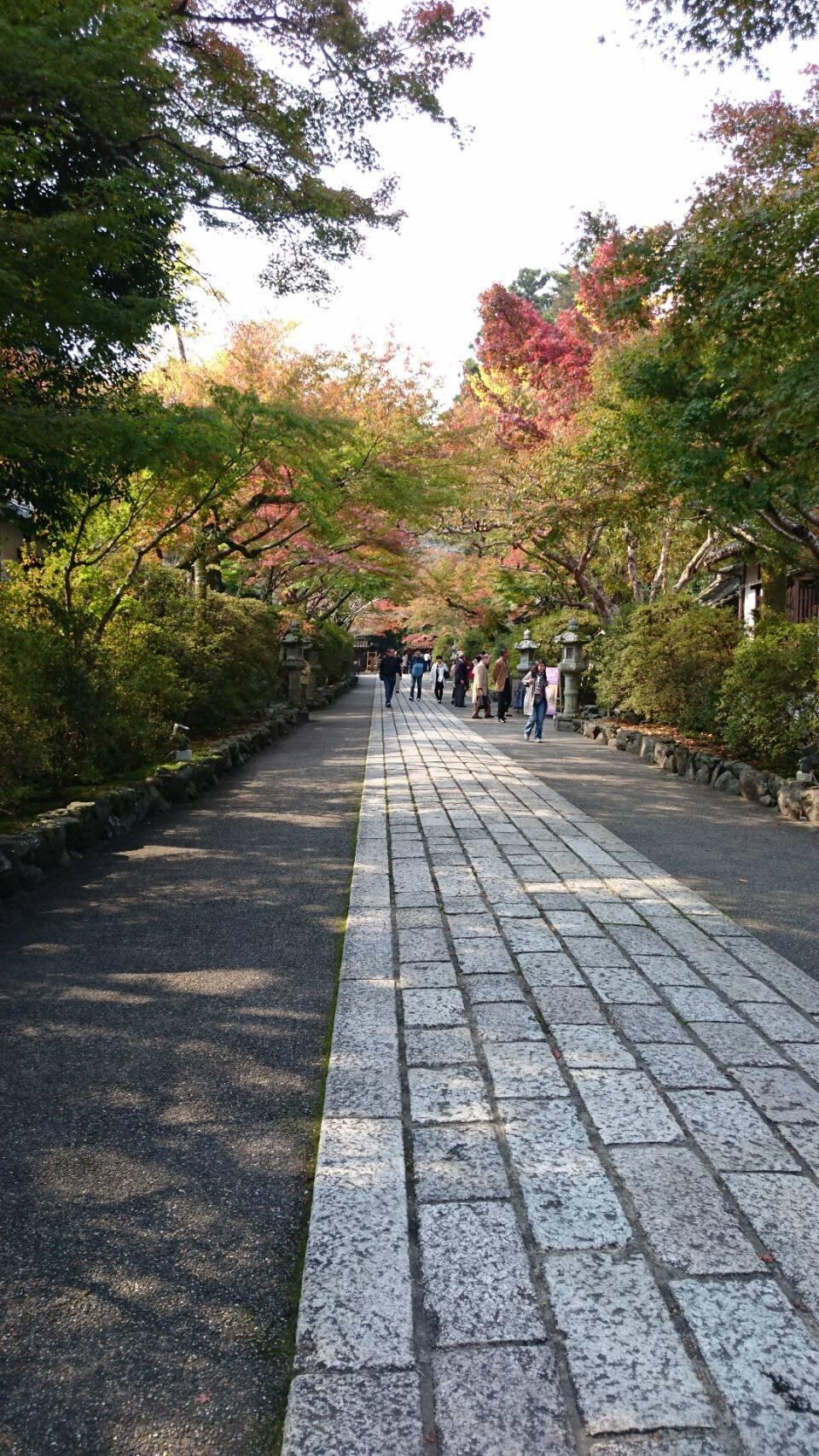 ハーレーとカワサキで行く近江八幡ツーリング 石山寺