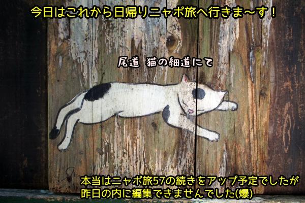 1125_1.jpg