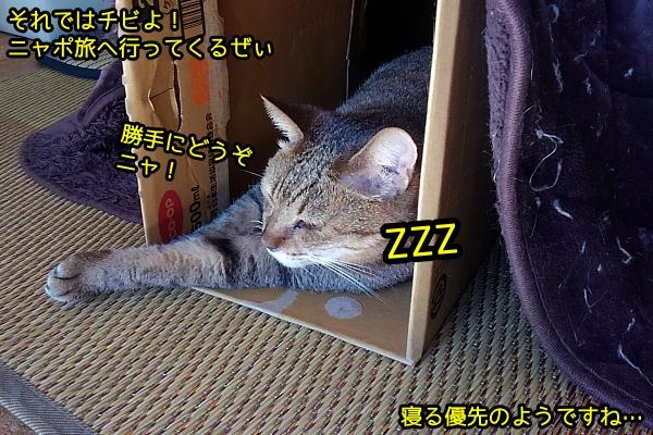 1125_2.jpg