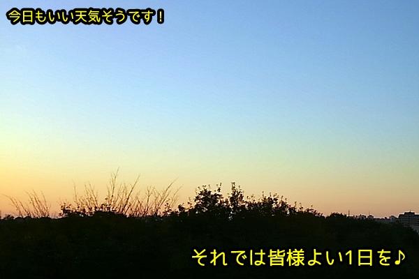 KIMG5884_6.jpg