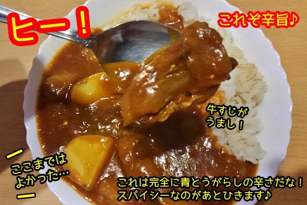 激辛カレー 胃