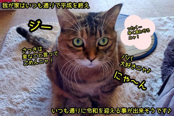 猫で平成を振り返る