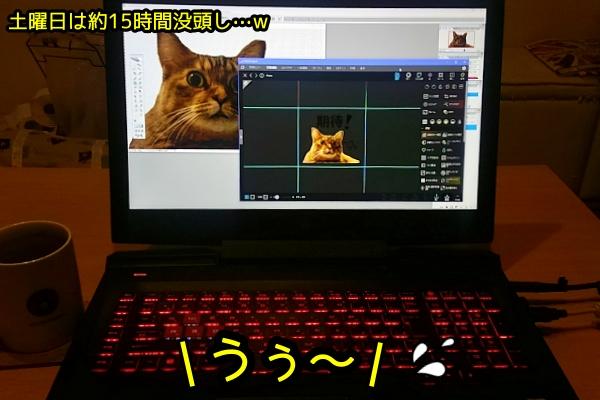 ld2.jpg