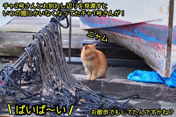 ニャポ旅63 熱海編6