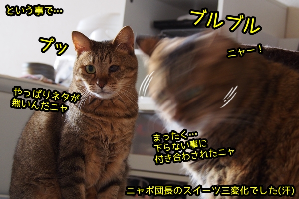 猫 スイーツ