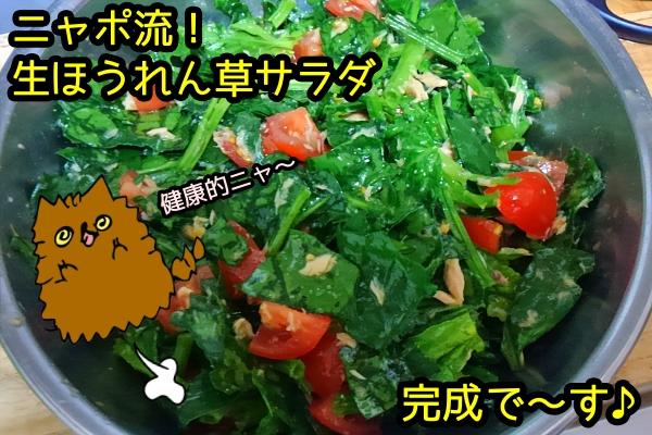 生ほうれん草 サラダ