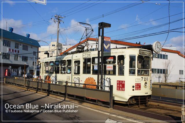 DSC08699-thumbnail2.jpg