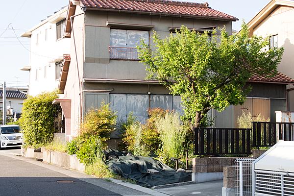 空き家と梅木