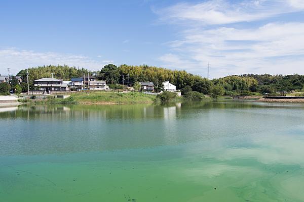 緑区の溜め池