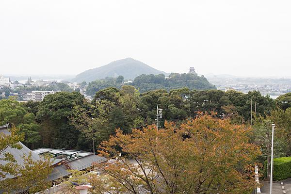 犬山城遠望
