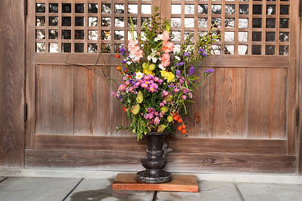 堂の前の花