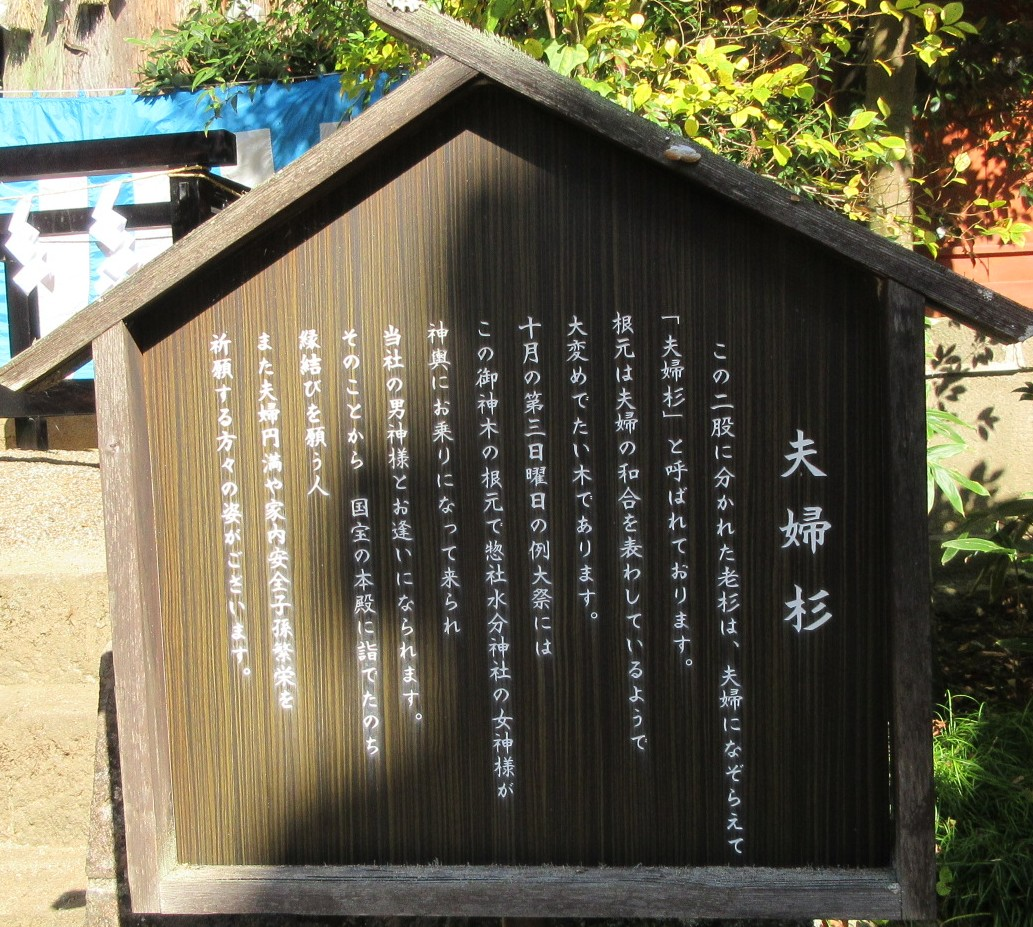 1810-21b-神武東征-IMG_6157説明