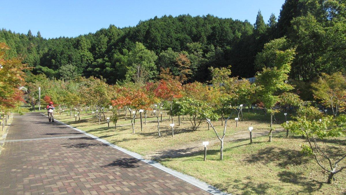 1810-18-神武東征-IMG_6137
