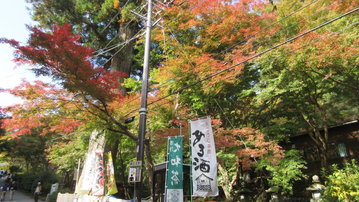 1811-20-櫻井-IMG_6370
