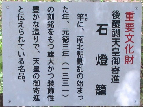 1811-19-櫻井-IMG_6369説明