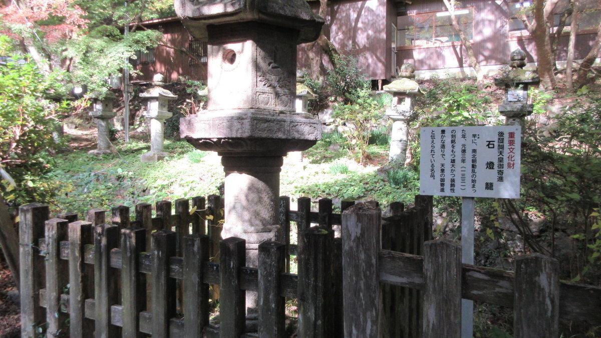 1811-18-櫻井-IMG_6368