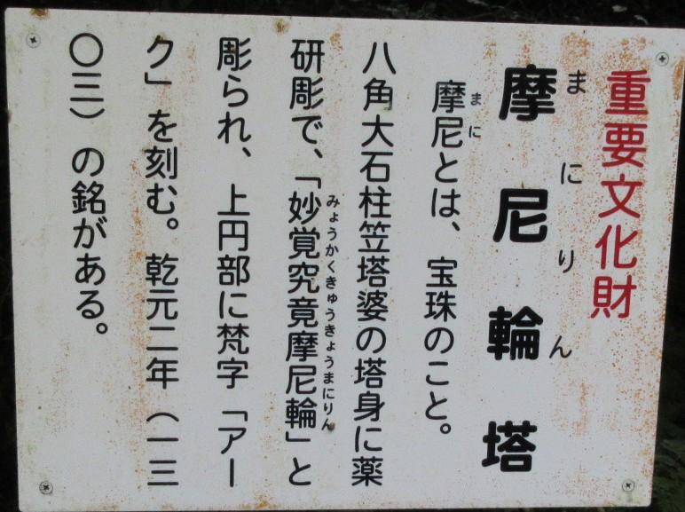 1811-16-櫻井-IMG_6366説明