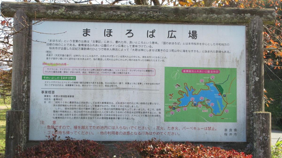 1811-08-櫻井-IMG_6349