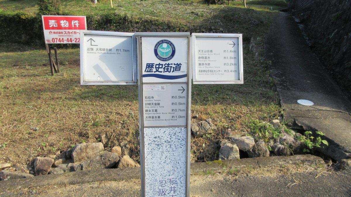 1811-06-櫻井-IMG_6345
