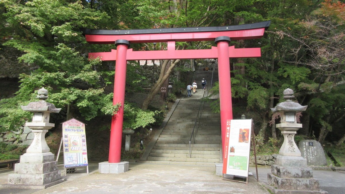 1811-21-櫻井-IMG_6373