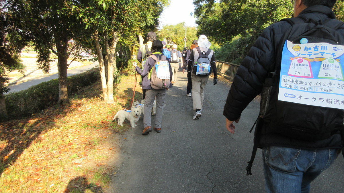 1811-05-加古川1日目-IMG_6441