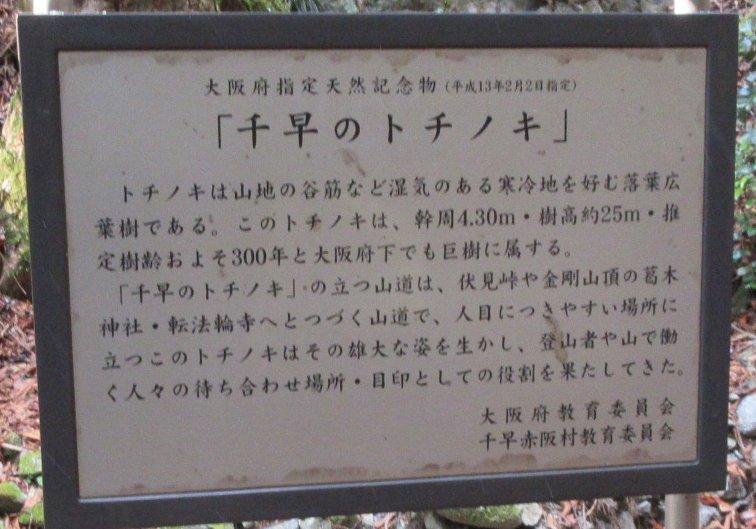 1901-31-金剛山-IMG_0247説明