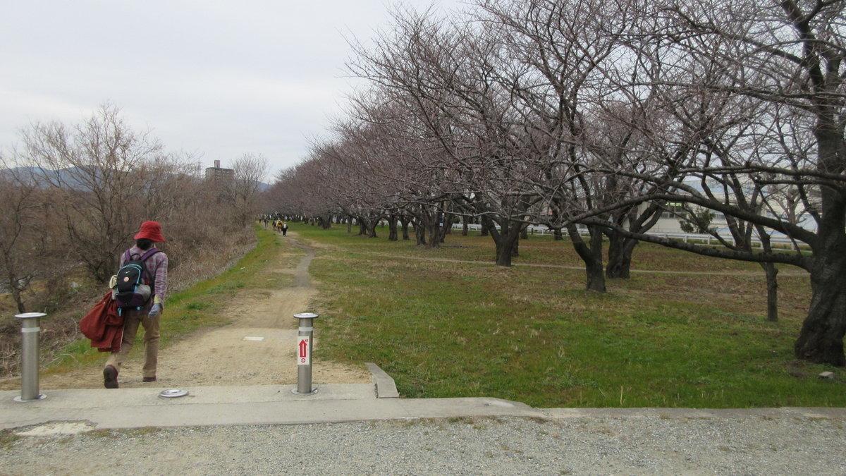 1902-06-武庫川-IMG_0430