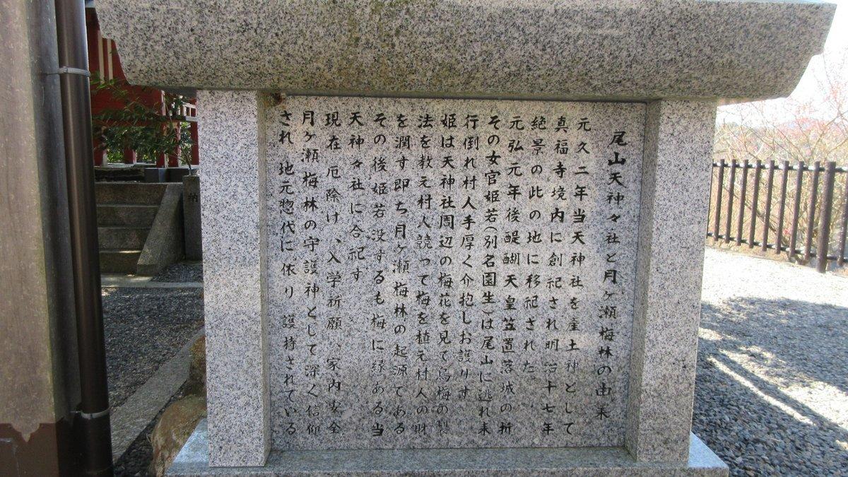 1903-08-月ヶ瀬-IMG_0629
