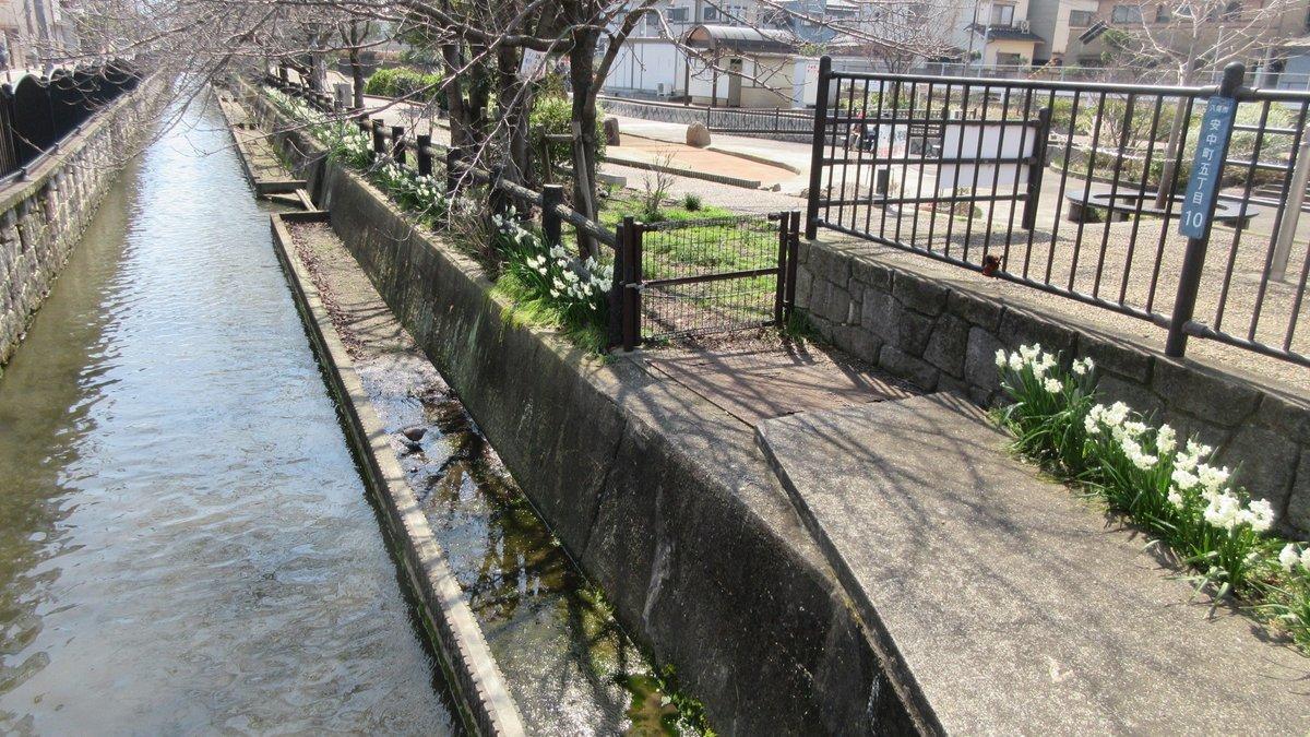 1903-04-八尾-IMG_0689