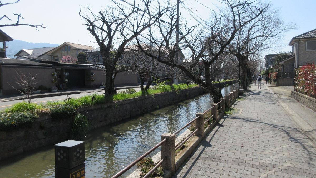 1903-02-八尾-IMG_0686