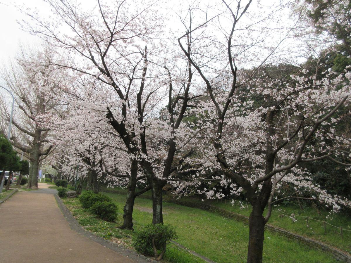 1903-28-名古屋1日目-IMG_0859