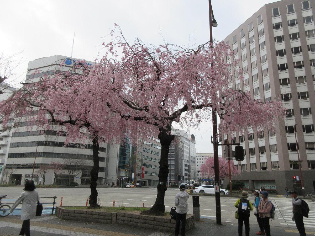 1903-25-名古屋1日目-IMG_0856