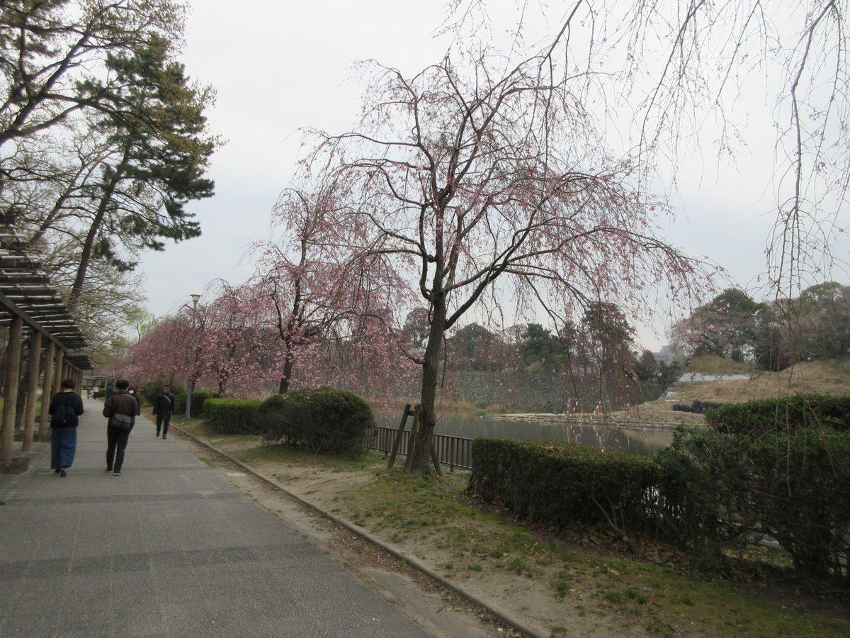 1903-23-名古屋1日目-IMG_0851