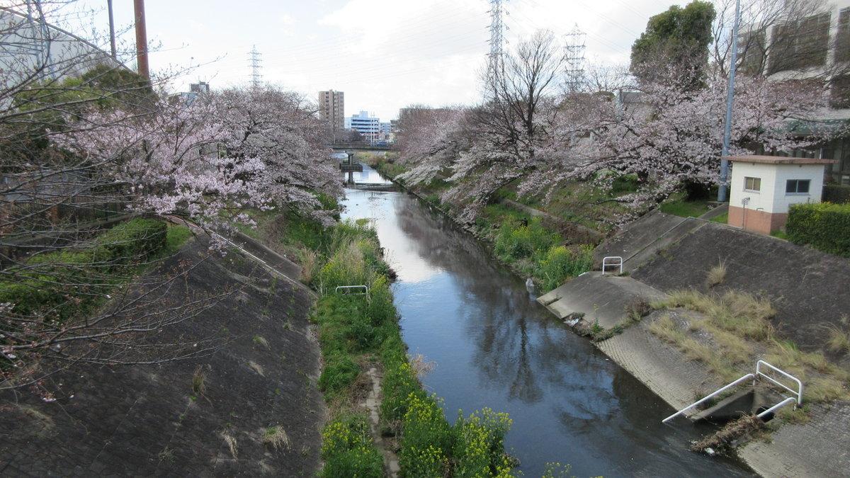 1903-06-名古屋2日目-IMG_0879