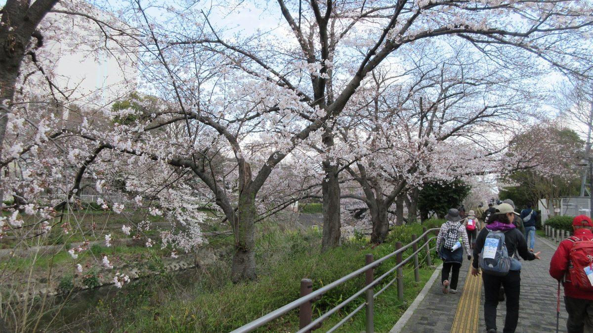 1903-05-名古屋2日目-IMG_0878