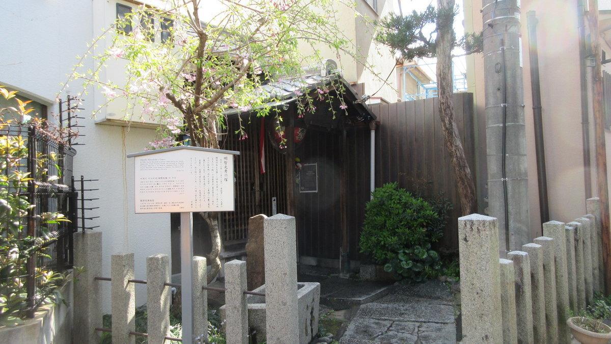 1904-11-京都花見-IMG_0995