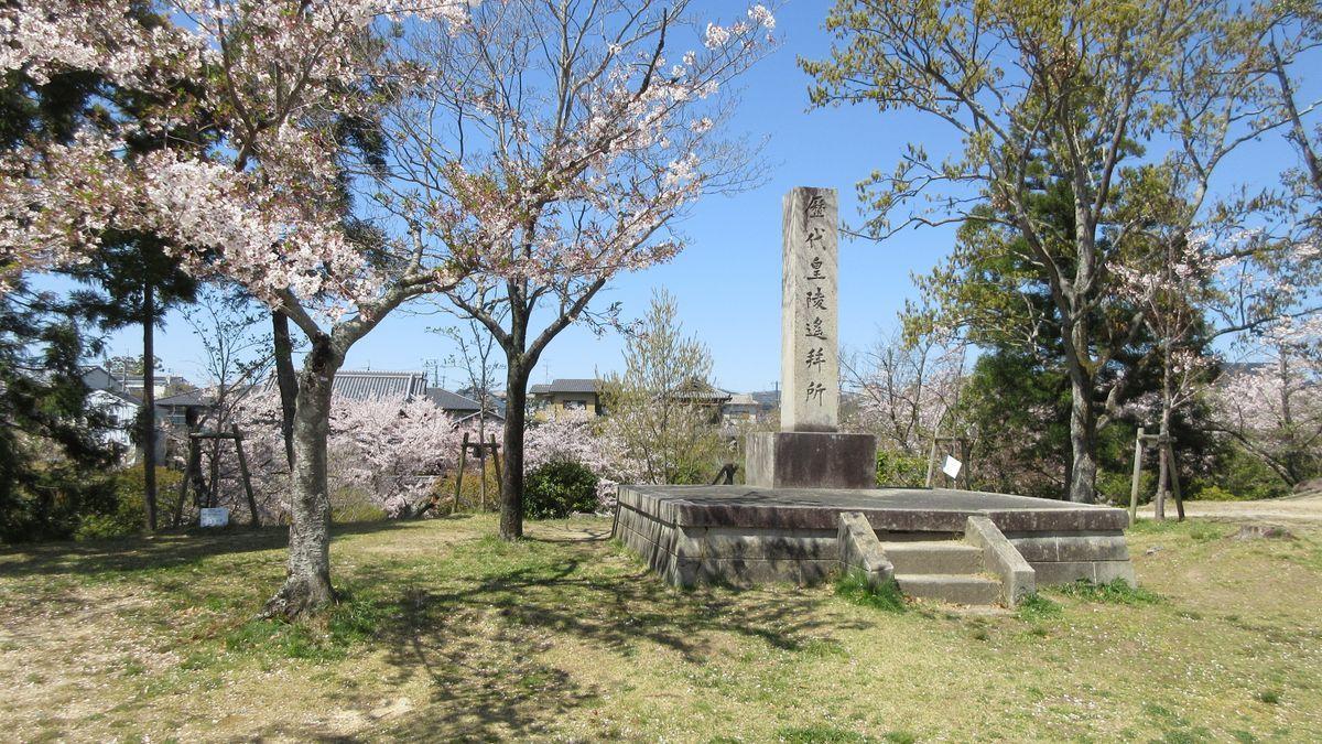 1904-04-佐保川-IMG_1159