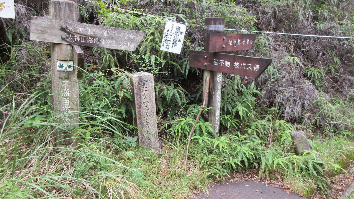 1909-09-太神山-IMG_2644