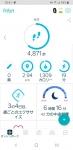 Screenshot_20190613-184109_Fitbit-540x1110.jpg