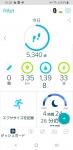 Screenshot_20190722-163622_Fitbit-540x1110.jpg