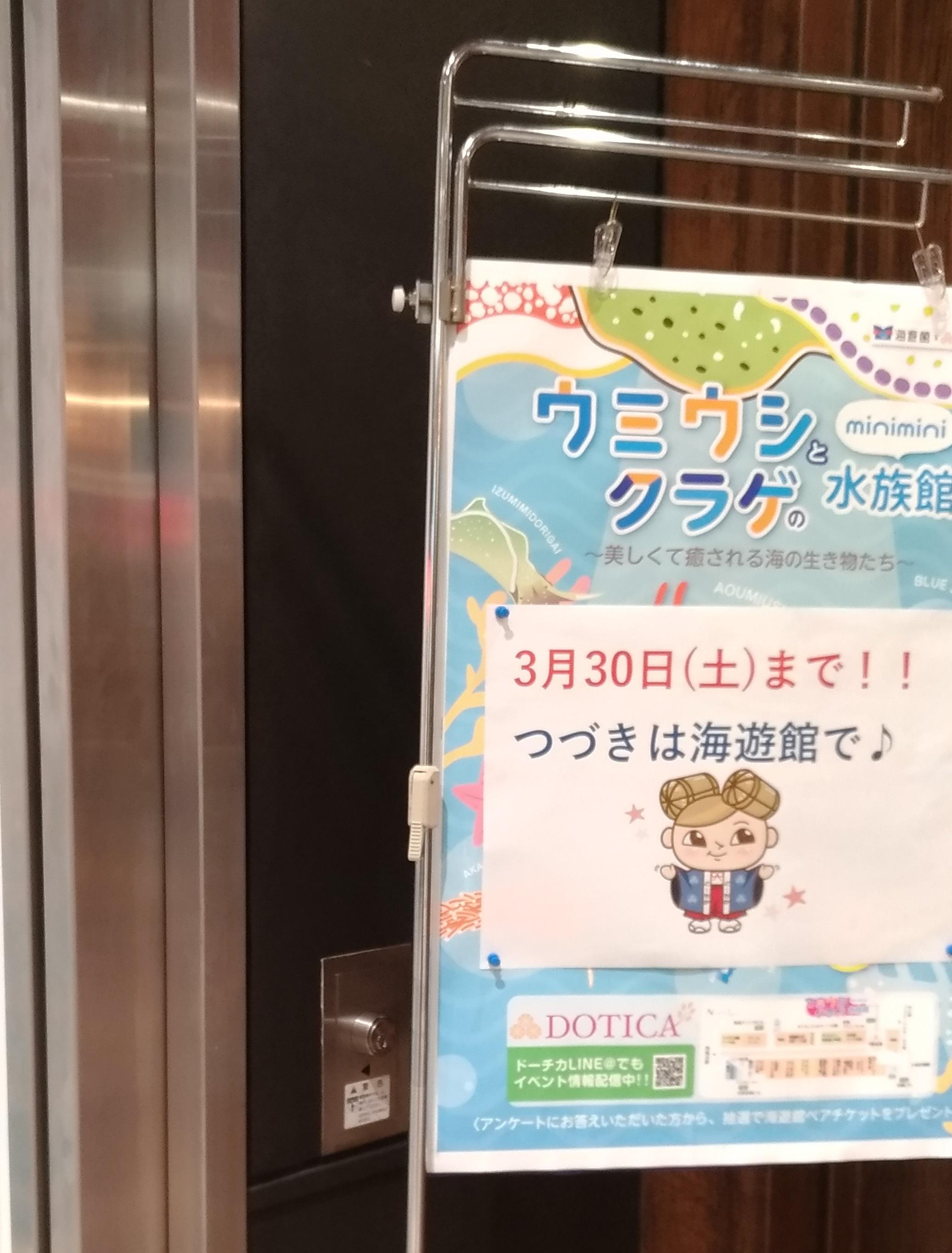 osaka_dotica_umeda_kaiyukan.jpg
