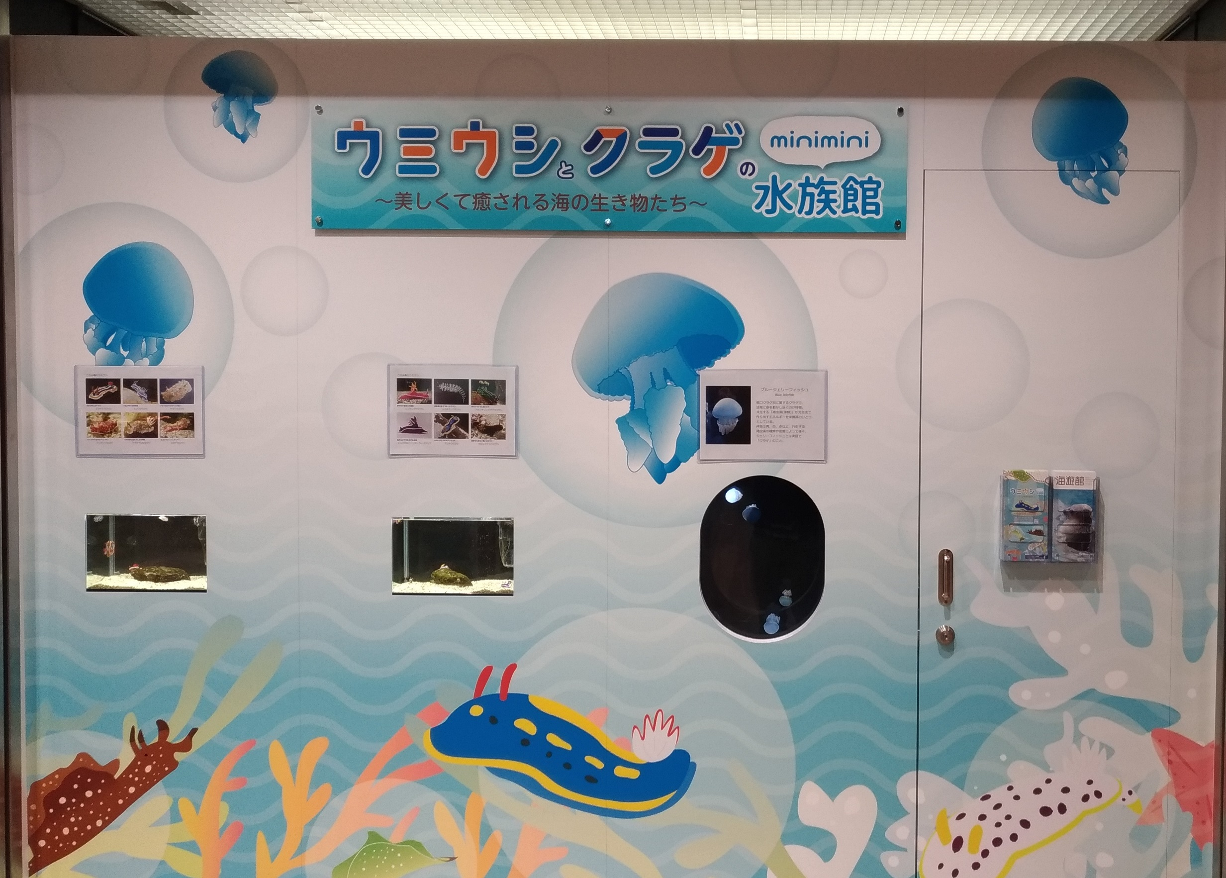 osaka_dotica_umeda_kaiyukan_1.jpg