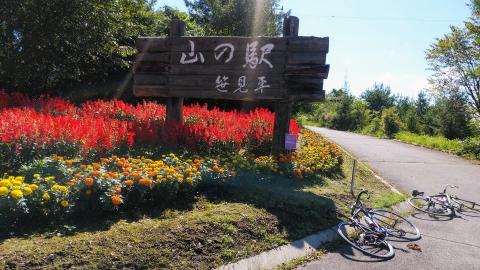 4,5km程走ると山の駅という物産店がありました。サルビアの花が綺麗!