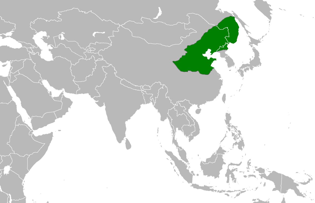 金(1200年頃)