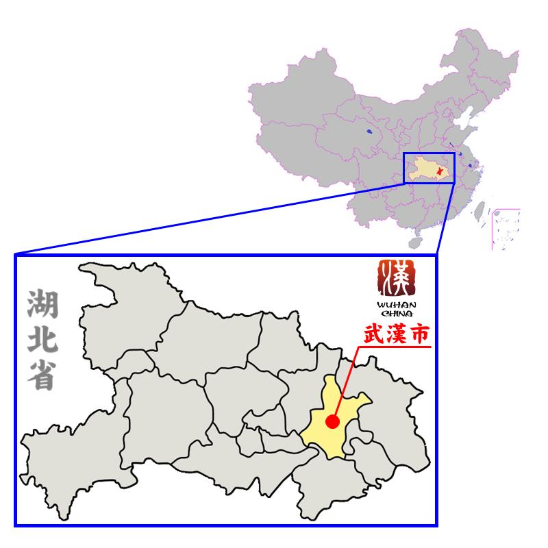 湖北省中の武漢市の位置