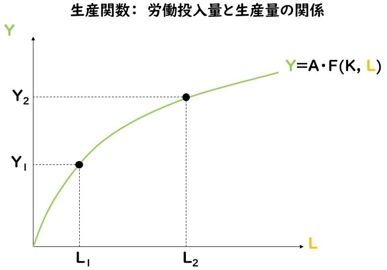 生産関数:労働投入量と生産量の関係