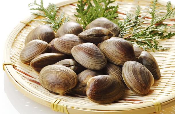 hard-clam-nutrition.jpg