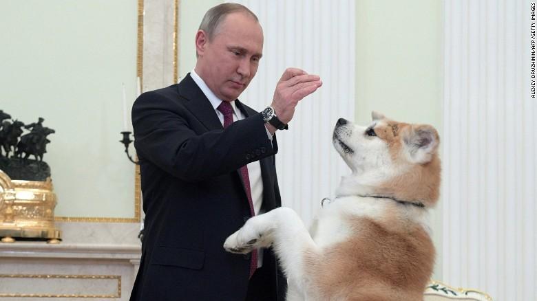 putin-dog.jpg