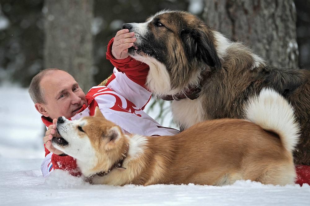 putin_dogs20130410.jpg